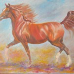 Abu Dhabi Arabian - 24 x 16 inches - oils on canvas framed - $500